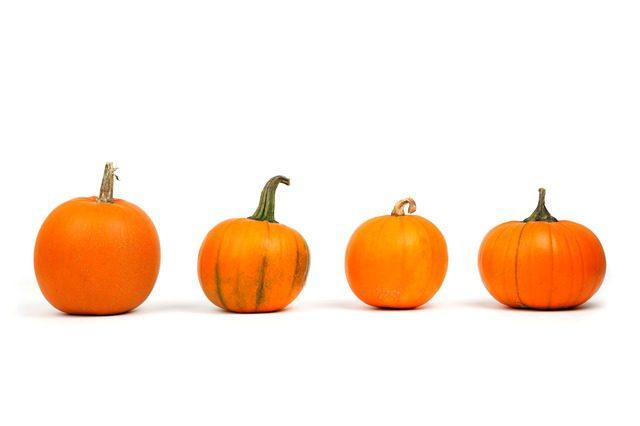 fall pumpkins pixabay LRC